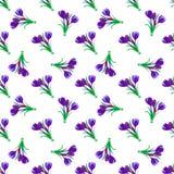 Seamless fjädra mönstrar Krokus saffran, liljekonvalj, sn Arkivfoton