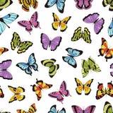 seamless fjärilsmodell Blom- trädgårdtryck, sömlös grafisk bakgrund med fjärilar och blommor Vektorhand royaltyfri illustrationer