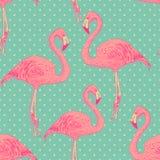 Seamless flamingo bird pattern. hand drawn vector Stock Photos