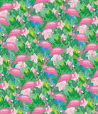 Seamless flamingo bird pattern Stock Photography