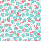Seamless flamingo pattern Royalty Free Stock Image