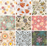 Seamless floral background. Set of seamless floral background  illustration Stock Images