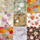Seamless floral background. Abstract vector set of seamless floral background Royalty Free Stock Photography