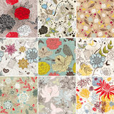 Seamless floral background. Abstract vector set of seamless floral background Royalty Free Stock Image