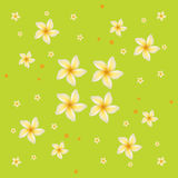 Seamless floral background. Repeating vector backdrop, with plumeria flowers Stock Image