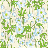 Seamless floral background with anemones Royalty Free Stock Photo