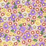 seamless floral background. Background with daisies Royalty Free Stock Photos