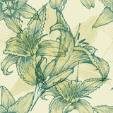 Seamless floral background with blooming lilies, h. And drawing Stock Photos