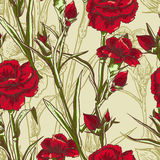 Seamless floral background with carnation Stock Photography