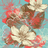 Seamless floral background with flowers apple, han stock illustration