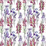 Seamless floral background with flowers. Drawing. Seamless background. stock image