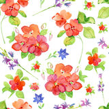 Seamless floral background with flowers. Royalty Free Stock Photos