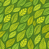 Seamless floral background, green leaves pattern Royalty Free Stock Images