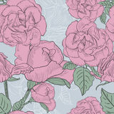 Seamless floral background with hand drawn pink roses. Vector EP Stock Photography
