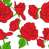 Seamless floral background with hand drawn red roses. Vector EPS10 Royalty Free Stock Photos