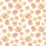 Seamless floral background with pastel delicate poppy flowers. Aquarell painted drawing Stock Images