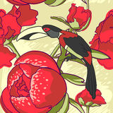 Seamless floral background with peonies bird Stock Image