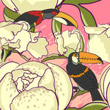 Seamless floral background with peonies bird Royalty Free Stock Photo