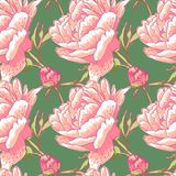Seamless floral background with peonies Royalty Free Stock Photos