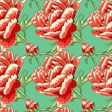 Seamless floral background with peonies Royalty Free Stock Photo