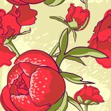 Seamless floral background with peonies Stock Images