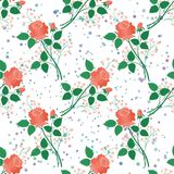 Seamless floral background, roses Stock Images