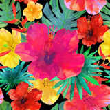 Seamless floral  background. Tropical colorful pattern.  Royalty Free Stock Photos
