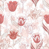 Seamless Floral Background, Tulips Stock Photos