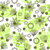 Seamless floral background in vector. Seamless form backdrops for the design of fabrics and wallpapers Stock Photography