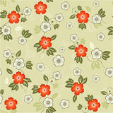 Seamless floral background in vector. Elements of design seamless backgrounds, plants and flowers in vector Stock Photos