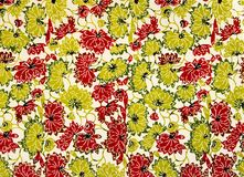 Seamless floral background... Stock Photos