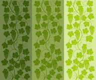 Seamless floral background with a vine. Vector illustration Stock Photography
