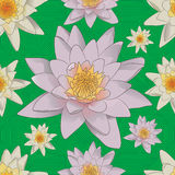Seamless floral background with white lilies. Seamless floral pattern with white lilies on the green background Royalty Free Stock Images