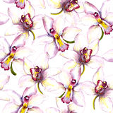 Seamless floral background with white orchid flower. Hand painted watercolor drawing. Seamless floral background with orchid flowers. Hand painted watercolor Royalty Free Stock Image