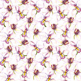 Seamless floral background with white orchid flower. Hand painted watercolor drawing. Seamless floral background with orchid flowers. Hand painted watercolor Stock Image