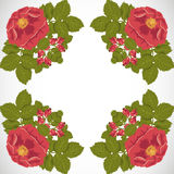 Seamless floral background with wild rose Stock Photo