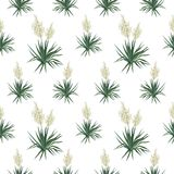 Seamless floral background, Yucca flowers. On white background. Vector vector illustration