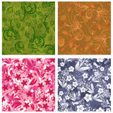 Seamless floral backgrounds set Stock Photography