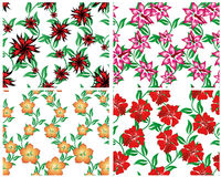 Seamless floral backgrounds set. Seamless vector floral backgrounds set. For easy making seamless pattern just drag all group into swatches bar, and use it for vector illustration