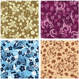 Seamless floral backgrounds set Royalty Free Stock Photography
