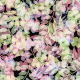 Seamless floral berry pattern pastel background Stock Photography