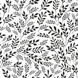 Seamless floral black and white background. Hand drawn vector illustration Royalty Free Stock Image