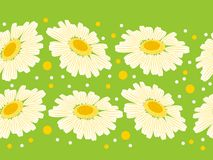 Seamless floral border Royalty Free Stock Photography