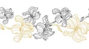 Seamless floral border. Iris flowers stock illustration