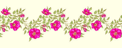 Seamless floral borders Stock Images