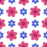 Seamless floral colorful pattern Stock Image