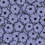Seamless floral daisy flowers pattern. Background Stock Images