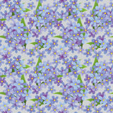 Seamless floral decorative pattern Royalty Free Stock Photo