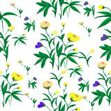 Seamless floral design Royalty Free Stock Photography