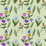 Seamless floral doodle pattern. Stock Images